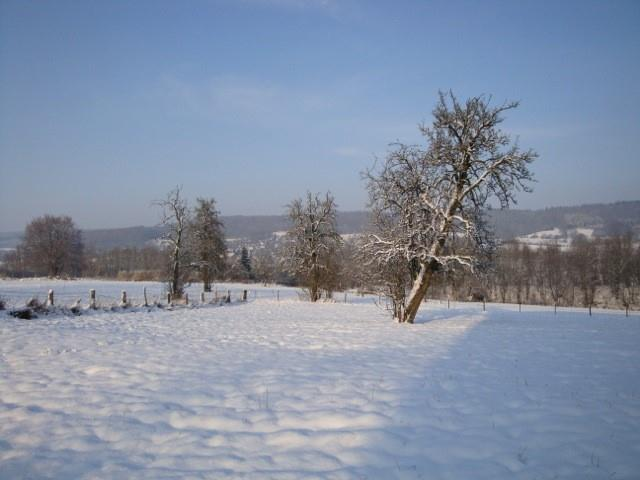 Terrain à bâtir - Gemmenich - #1709610-7